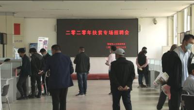 鄒城首場線下招聘會 200多人達成協議就業意向