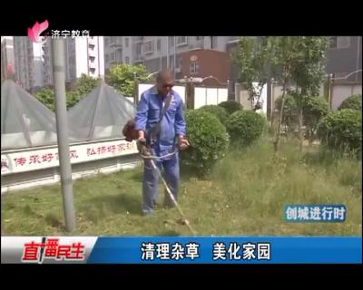清理杂草 美化家园
