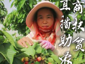 """金乡尝鲜电商直播""""带货"""" 开启战""""疫""""助农新模式"""