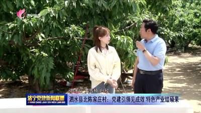 泗水縣北陳家莊村:黨建引領見成效 特色產業結碩果