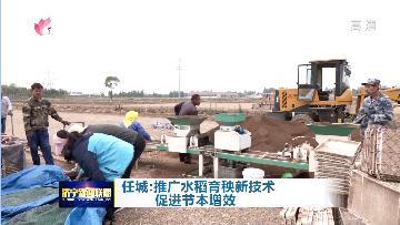 任城大力推广水稻育秧新技术 效率提高10倍不止