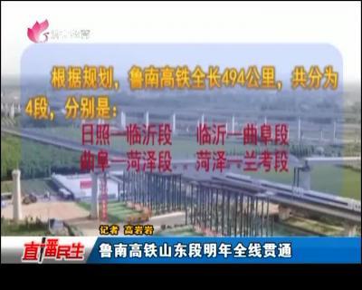 魯南高鐵山東段明年全線貫通