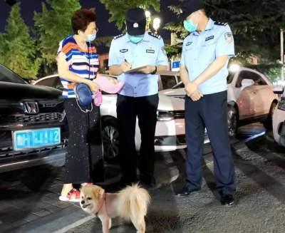 依法养犬,济宁任城区犬只留检所正在建设中,最大容量6000只