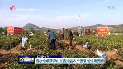 泗水地瓜获评山东省知名农产品区域公用品牌