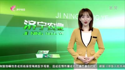 济宁农业——20200508