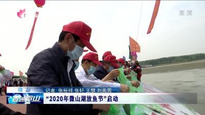 """""""2020年微山湖放魚節""""啟動"""
