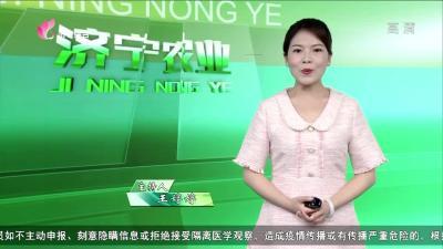 济宁农业——20200515
