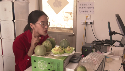 销路不愁了!村民直播卖甜瓜  一天卖出一万斤