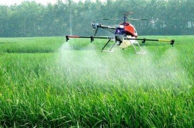 即日起,兗州開始飛防作業 這些事項需注意