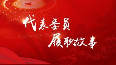 代表委員履職故事|段青英:致力中醫藥守正創新