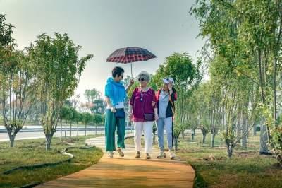"""泗河串起""""金项链""""!盘活龙湖湿地、大禹文化公园、牛楼小镇等项目"""