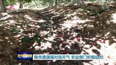 """济宁强对流天气让农作物""""很受伤"""" 农技专家""""支招忙"""""""