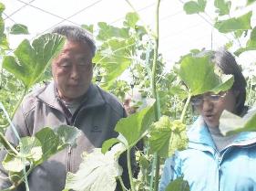 農產質量安全縣再增八位新成員 兗州和魚臺入選