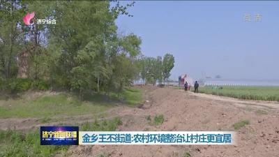 金鄉王丕街道:農村環境整治讓村莊更宜居