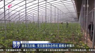 曲阜王庄镇:党支部领办合作社 助推乡村振兴
