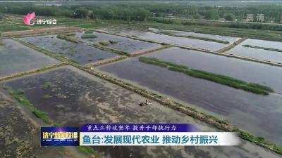 重点工作攻坚 | 济宁鱼台:发展现代农业  推动乡村振兴