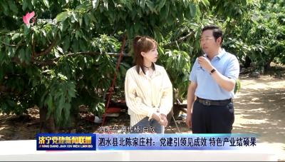 泗水县北陈家庄村:党建引领见成效 特色产业结硕果