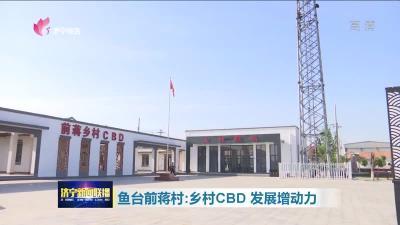 鱼台前蒋村:乡村CBD  发展增动力