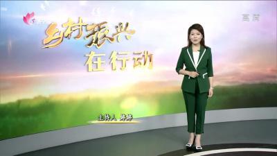 鄒城大束鎮:多點聚力特色小鎮  助推鄉村振興