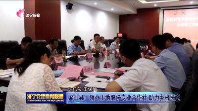 梁山县:领办土地股份专业合作社助力乡村振兴