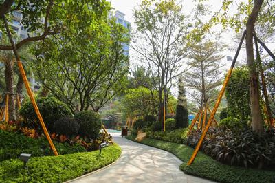 济宁今年将组建市政、园林维护工程队