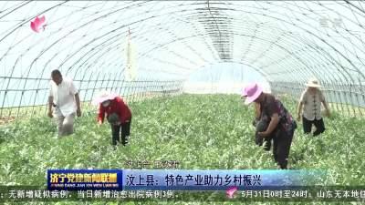 汶上县:特色产业助力乡村振兴