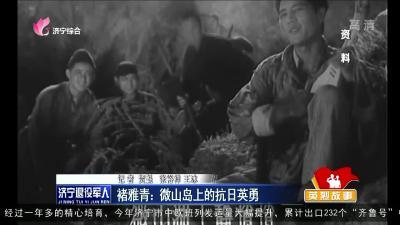 褚雅青:微山島上的抗日英勇