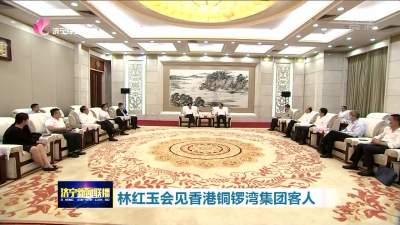 林红玉会见香港铜锣湾集团客人 加快推进重点项目合作