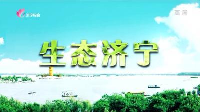 生态济宁—20200619