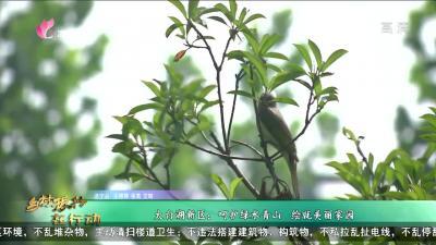 濟寧鄉村振興在行動第九期:太白湖新區石橋鎮:呵護綠水青山 繪就美麗家園