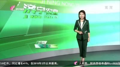 济宁农业——20200612