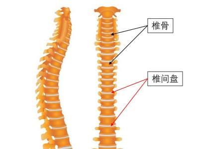 推拿可以復位突出的椎間盤?不可以,一定先咨詢醫生意見