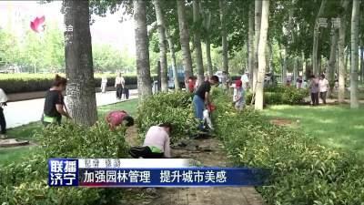 加強園林管理 提升城市美感