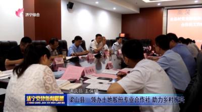 梁山县:领办土地股份专业合作社 助力乡村振兴