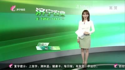 济宁农业——20200616