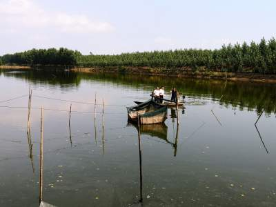 邮储银行微山县支行助力脱贫攻坚为虾蟹养殖户提供贷款支持