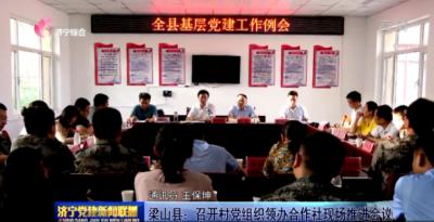 梁山县:召开村党组织领办合作社现场推进会议