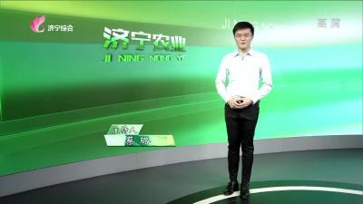 济宁农业——20200602