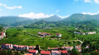 评论:建设美丽宜居乡村 一定要更加注重规划引领