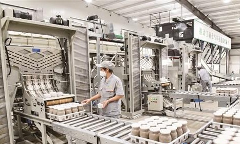 小蘑菇成鄉村振興大產業——鄒城蘑菇小鎮一期建設項目側記