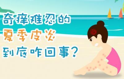 奇痒难忍的夏季皮炎是怎么回事?咋预防?一图看懂