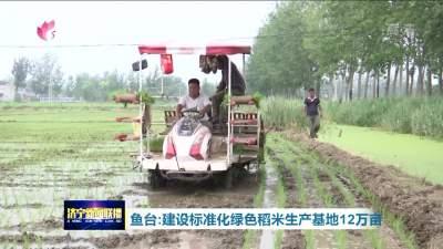 魚臺:建設標準化綠色稻米生產基地12萬畝
