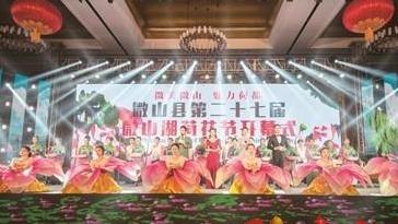 """第二十七届微山湖荷花节开幕!""""云端办节""""了解一下"""