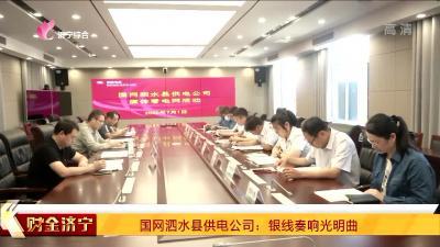 國網泗水縣供電公司:銀線奏響光明曲