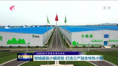 2020济宁市重点项目巡礼|邹城蘑菇小镇项目:打造三产融合特色小镇