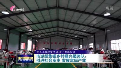 市派胡集镇乡村振兴服务队:引进社会资本 发展富民产业