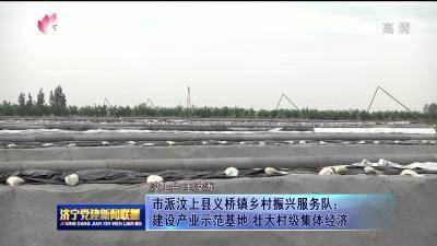 市派汶上县义桥镇乡村振兴服务队:建设产业示范基地 壮大村集体经济