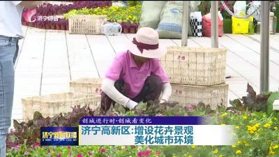 创城进行时|济宁高新区增设花卉景观 提升城市颜值