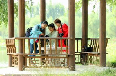 """邮储银行首届""""金晖""""杯老年摄影大赛颁奖仪式成功举办"""