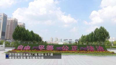 济宁高新区增设花卉景观